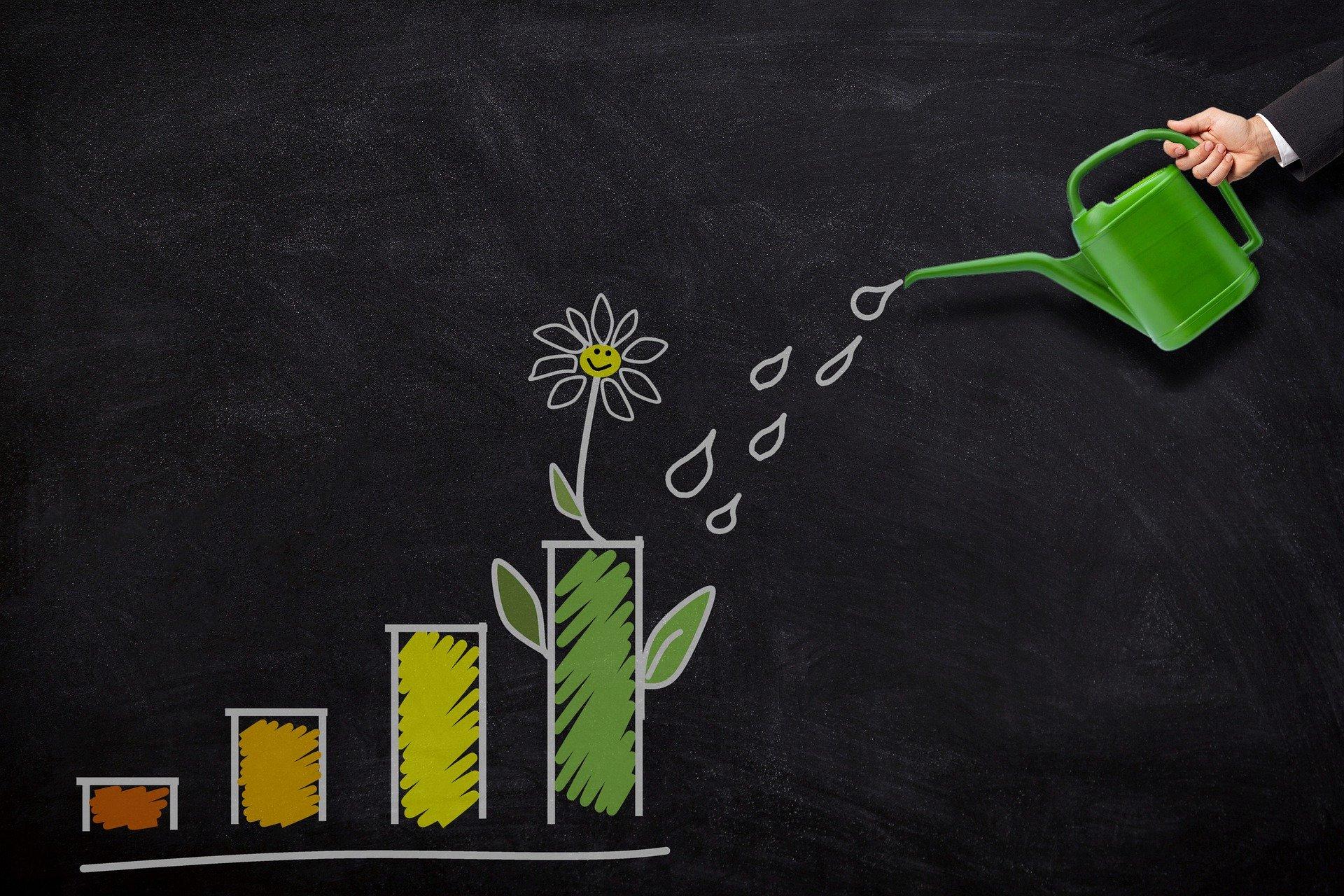 להגדיל רווחיות בעסק שלך
