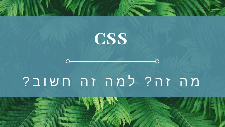 בניית אתרי וורדפרס – הקשר בין מהירות ואלגנטיות וטכנולוגית  CSS