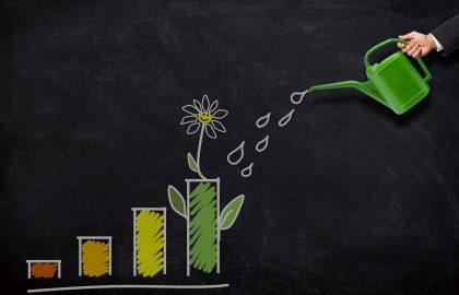 איך לקחת בעלות על העסק שלך ולהגדיל רווחיות